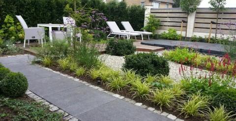 Project: Moergestel kleine tuin
